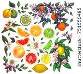 set of watercolor illustrations ... | Shutterstock . vector #751550485