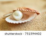 shell with a pearl | Shutterstock . vector #751594402