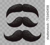 funny retro hair mustaches... | Shutterstock .eps vector #751643458