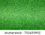 grass background golf courses... | Shutterstock . vector #751655902