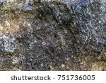 natural hard rock or stone... | Shutterstock . vector #751736005
