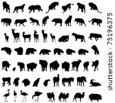 big set of zoo animal...   Shutterstock .eps vector #75196375