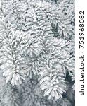 winter snowy pine christmas... | Shutterstock . vector #751968082