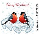 beautiful retro christmas card... | Shutterstock .eps vector #751977568