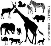 collection of vector...   Shutterstock .eps vector #75198871