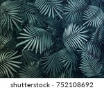 grey tropical leaves background.... | Shutterstock . vector #752108692