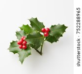 christmas holly with red... | Shutterstock . vector #752288965