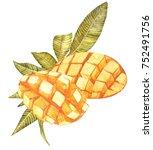 mango cubes vintage design... | Shutterstock . vector #752491756