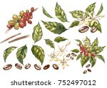 set of red coffee arabica beans ... | Shutterstock . vector #752497012