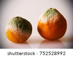 moldy orange with isolated... | Shutterstock . vector #752528992