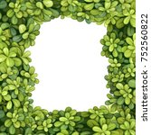Vector Frame From Green Round...