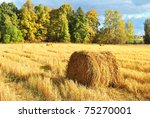 A Roll Of Straw. Autumn...