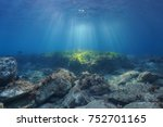 Underwater Seascape Natural...