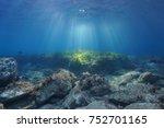 Underwater Seascape Natural...