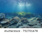 underwater rocks and seagrass... | Shutterstock . vector #752701678