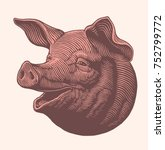 pork head. hand drawn engraving.... | Shutterstock .eps vector #752799772