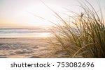 gold coast australian beach | Shutterstock . vector #753082696