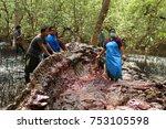 samutprakarn  thailand   july... | Shutterstock . vector #753105598