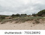 entry to hallet cove... | Shutterstock . vector #753128092