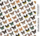 flying butterfly collection... | Shutterstock . vector #75313207