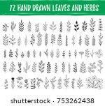 set of hand drawn leaves  herbs ... | Shutterstock .eps vector #753262438