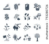 set of black icons plant  herb  ... | Shutterstock .eps vector #753280726