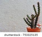 background of cactus | Shutterstock . vector #753325135