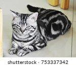 a cat preteds to sleep | Shutterstock . vector #753337342