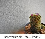 a beautiful background from... | Shutterstock . vector #753349342
