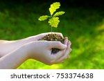 small oak tree plant in hands.... | Shutterstock . vector #753374638