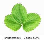 fresh green strawberry leaf...   Shutterstock . vector #753515698