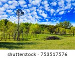 pretty texas hill country ranch ... | Shutterstock . vector #753517576