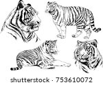 set of vector drawings on the... | Shutterstock .eps vector #753610072