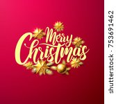 merry christmas calligraphic... | Shutterstock .eps vector #753691462