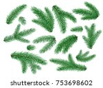 spruce fir tree branches  twigs ... | Shutterstock .eps vector #753698602