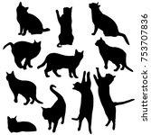 set vector silhouettes of the... | Shutterstock .eps vector #753707836