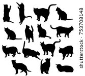 set vector silhouettes of the... | Shutterstock .eps vector #753708148