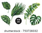 tropical palm jungle leaves ... | Shutterstock .eps vector #753728332