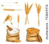 vector set realistic canvas... | Shutterstock .eps vector #753829576