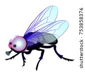 funny fly with big eyes... | Shutterstock .eps vector #753858376