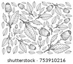 vegetable and herb ... | Shutterstock . vector #753910216