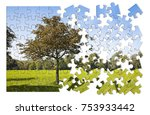 isolated tree in a green meadow ... | Shutterstock . vector #753933442