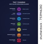 infographic on body chakras and ... | Shutterstock .eps vector #753946282