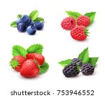 berry realistic set with... | Shutterstock . vector #753946552