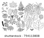autumn herbarium leaves and... | Shutterstock .eps vector #754113808