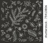 floral ornament sketch ... | Shutterstock .eps vector #75413806