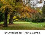 Park Near Castle At Autumn In...