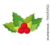 mistletoe icon image | Shutterstock .eps vector #754191922