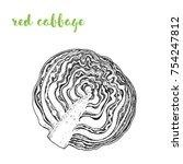 red cabbage vector illustration.... | Shutterstock .eps vector #754247812