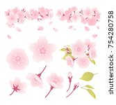 illustration of parts of cherry ... | Shutterstock .eps vector #754280758